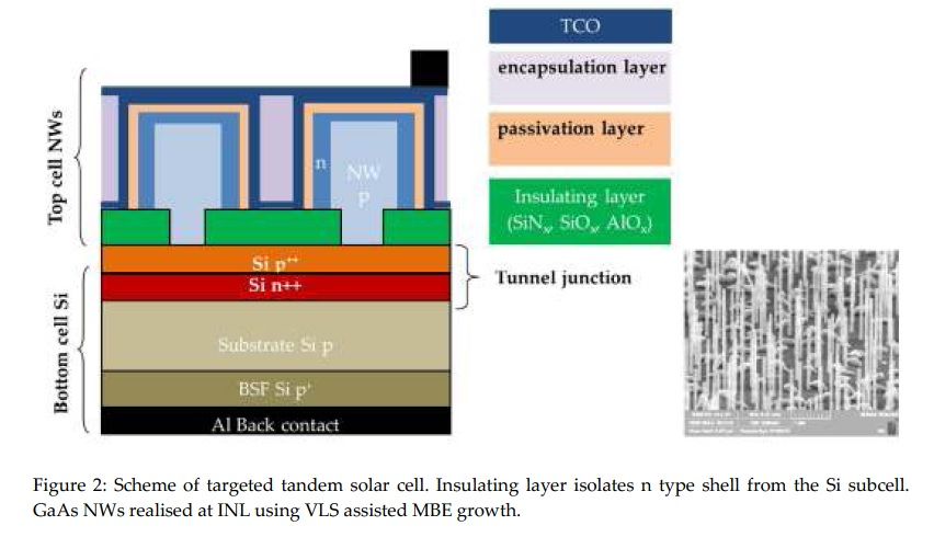 Figure 2: Scheme of targeted tandem solar cell. Insulating layer isolates n type shell from the Si subcell. GaAs NWs realised at INL using VLS assisted MBE growth.