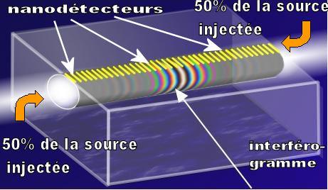 spectomètre intégré basé sur la mesure de l'interférogramme