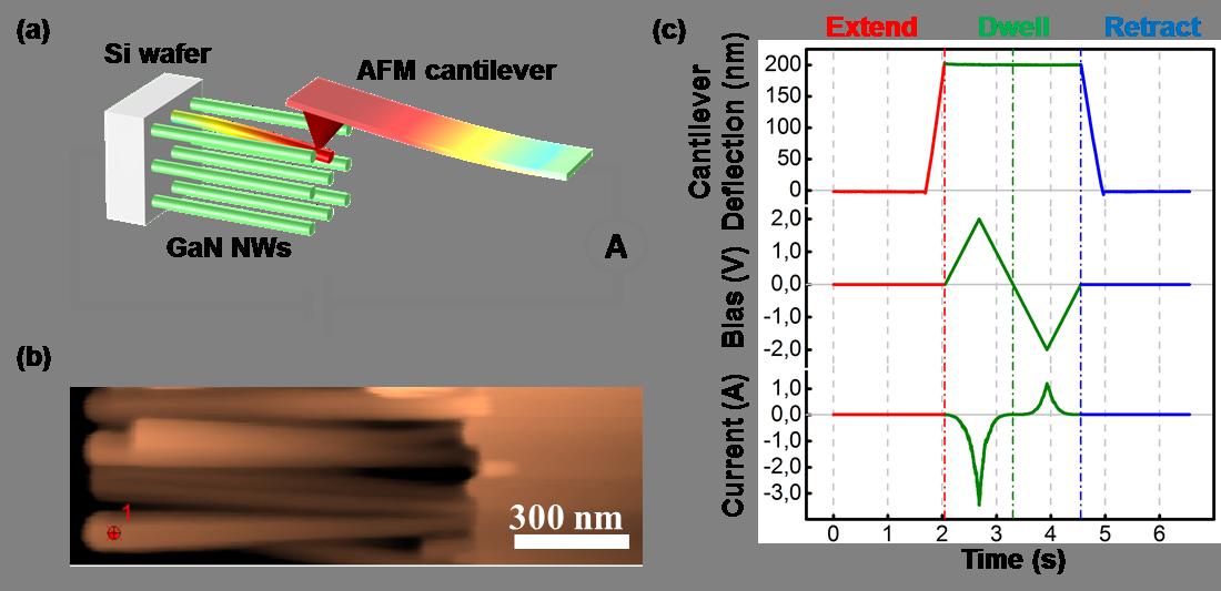 Caractérisation de NFs piezo SC (ZnO, GaN…). Modulation de la hauteur de barrière Schottky pointe/NF par la polarisation piézoélectrique.
