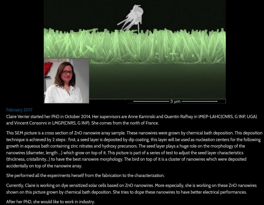 NanoART- 2017-Claire VERRIER