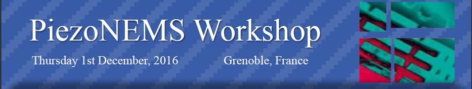 PiezoNEMS Workshop